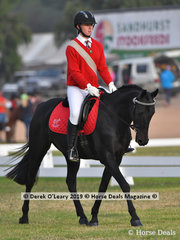 "Tanisha Stewart rode ""Bellarny Park Illusion"" in the Grade 3 Dressage"