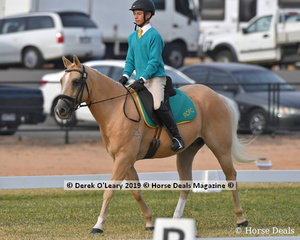 "Patrick Keogh from Riddells Creek rode ""Mudslide"" in the Grade 4 Dressage for the ""LAMP Riddle Team"""
