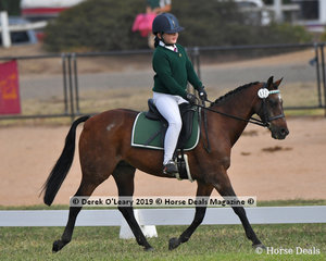 "Lily Collins rode ""Weston PArk Craftsman"" in the Grade 5 Dressage representing Mildura Alcheringa"