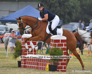 """Olivia Burke in the E Grade Showjumping riding """"Craft Show"""" on the Team Green representing Bamawm"""