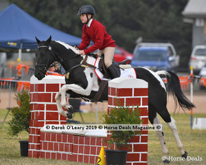 "Bree Forest rode ""Montana"" in the E Grade Showjumping her team ""Wirlinga Brumbies"""