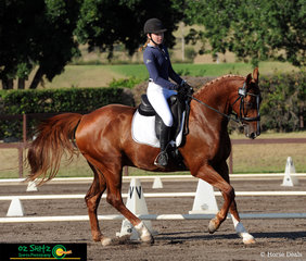 Year 10 student from Wenona, Carlyle Bellotti and her equine partner Isle of Hinchenbrook prepare for their lengthen canter in the Secondary Senior Novice dressage.