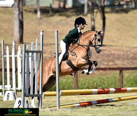 All eyes on Jett Newman and his overachieving pony, Wyatt Park Angel Dust as they soar around the Working Hunter Primary on the final day of competition at the NSW Interschool State Championships