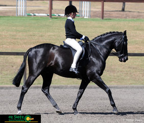 Beautiful in black during the Primary Show Hunter was Grade 6 student Tia Rose Mckenzie from Loreto Kirribilli competing on Mirinda Jackpot at the NSW State Interschool Championships.
