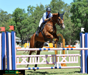 Showing us how it's done in the Secondary 1.2m class at the NSW State Interschool Championships is rider Olivia Chambers and her horse Anjarro Stud Mischief from Chevalier College.