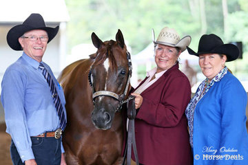 "Saturday's judges for the G&DWPC ""A"" & ""AA"" Double Judge Western Show were Mr Bob Sim & Mrs Debbie Watson seen here with the unanimously selected Overall Supreme Halter Horse, Whisper A Secret, shown by owner, Chris Sewell."