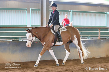 Danielle Cameron & Dee Bar Beyond The Blue enjoyed a good weekend with successes in hunter & western pleasure classes over the weekend.