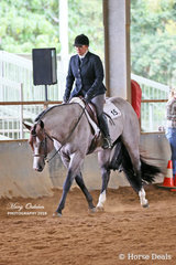 Reach For The Roan & Rosie Webb looking the goods in Saturday's Hunter Under Saddle events.