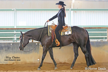 Special Kinda Lazy & Jodi Jacubenko were very successful in the Western Pleasure classes on both days of competition.