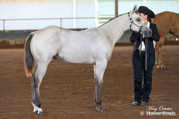 RSQ Mister Special Te & Jessica Simpson in the Open Weanling Futurity on the Saturday.