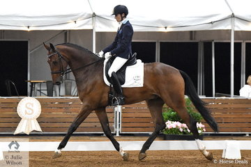 Janet Seccull rode her impressive Bloomfield Fenric in the 4 year old young horse class.