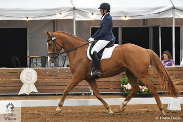 Bianca Joyce riding HPS Wynderland to tenth place in the 4 year old young horse class.