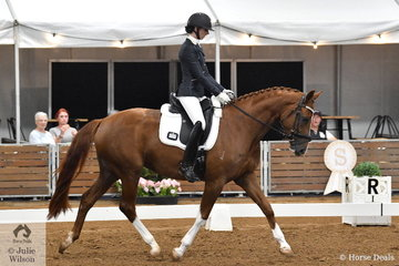 Shanon McKimmie rode Leah Crane's, RVL Danceonaire in the 4 year old young horse class.