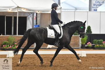 Justine Greer rode her stallion, Revelwood Stedfast in the 4 year old young horse round one.