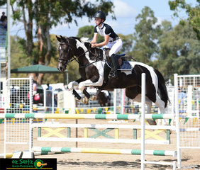 Paige Johnston had the ride on CP Ellira at the 2019 Warwick Show, riding for Tim Bowman.