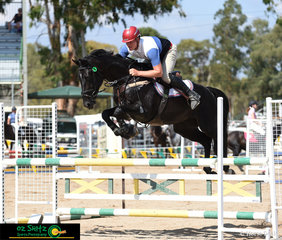 Lightening Strikes the 5 year old stallion by Thunder Down Under makes light work of the 1.10m fences in the Newcomers class on the Local's Day of the Warwick Show.
