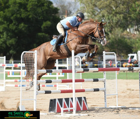Anthony Murray competes Foreplay in the 1.35m - 1.40m class on the second day of the 2019 Warwick Show.