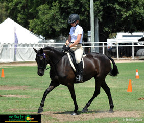 Black Magic Zionna the 4 year old friesian warmblood ridden by Margaret  Taylor in the hacking of the 2019 Warwick Show