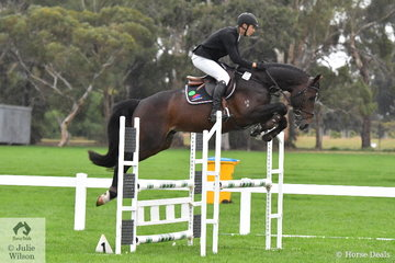 Talented jumping rider, Josh Collins rode the Yandoo Equestrian and Tulara Warmbloods' stallion, 'Tulara Casciado'  (Cascadello/Diarado) to second place in the Four Year Old Young Jumping Horse Championship.