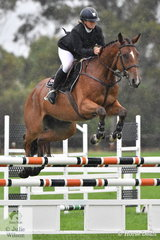 Kristy Bruhn from South Australia is getting her young horses out and about at DJWTS. The successful Grand Prix rider is pictured aboard her, 'Blackall Park Chopin' (BP Kokomo/Trinitas) that took sixth place in the Five Year Old Young Jumping Horse Championship.