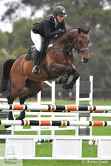 Successful Victorian rider, Jess Embling-Kiernan looks to be taking the competition seriously. She is pictured aboard her, 'Cera Cascaletto' (Casall ASK/Clearway) making a lovely jump on their way to  fifth place in the Five Year Old Young Jumping Horse Championship.