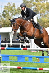 Victorian professional rider and trainer, Brook Dobbin rode  Ally Wake's, 'Byron' (Baluga/Vivant) to take sixth place in the Six Year Old Young Jumping Horse Championship.