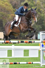 Jamie Coman rode Bronwyn Shartt and Anthony March's, 'Desert Sands Calavino' (Bellaire Cannavaro/Ludendorf) to ninth place in the Seven Year Old Young Jumping Horse Championship.