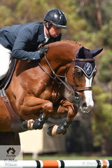 Jamie Kermond rode the Calliera Performance Horses and Yandoo Equestrian Services' nomination, 'Ciel' (Conquistador/Vivant) to take out the Seven Year Old Young Jumping Horse Championship and be declared Champion of Champions Young Jumping Horse.