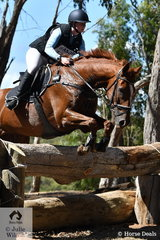 Anna Church and 'Viewbank Icon' are pictured during their Heritage Holden Lilydale CCI2* Division 2 cross country run.