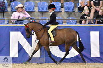 Annabelle Richardson rode Emma Richardson's well performed, 'Harrington Park Symphony' to make the Langtree Stud Child's Small Saddle Pony Championship Top Ten.