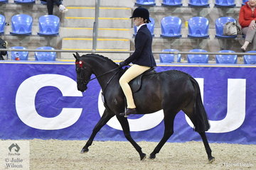 This year the Grand National introduced a competition for Four, Five and Six Year Old Ponies, Galloways and Hacks. These classes were judges outdoors at SIEC with the winners coming in in the evening  for an overall Grand National Champion Young Saddle Horse to be judged. Martine Duncan rode her, 'Argyl Harmony' to win the Six Year Old Large Pony Championship.