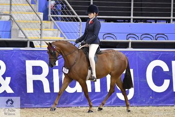 Emma Adams rode , Naomi Brincau's, 'Royalwood Song Book' to take out the Four Year Old Large Pony Championship