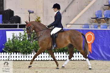 Elizabeth Daly from Young in NSW rode her, 'Wynara Illusion' to claim the Four Year Old Galloway Championship.