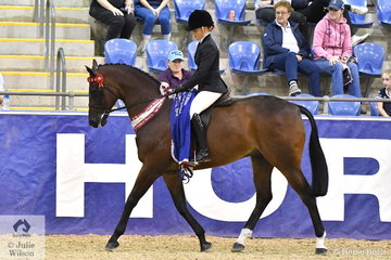 Amy Taylor is always well mounted and this evening took out the Reserve Champion Young Saddle Horse award with the Austin, Lilley and Taylor nomination, the Six Year Old Champion Hack, 'Saint Petersburg'.