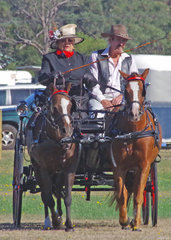 Multiple ponies/horses driven winner – Mother and son pair, Woranora Ria & Tooravale Solo driven by Tina Minty