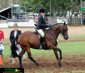 Under the watchful eye of the judge, Northwood Focus and Georgina Ellis perform their workout in the Hunter Cup to take the win on the third day of the Toowoomba Royal Show.