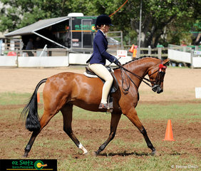 Looking the part in the Large Novice Child's Galloway Hack class is Madisen McGill and Pemberly Blue Diamond on day four of the 2019 Toowoomba Royal Show.