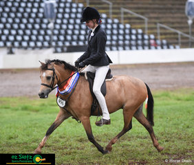 Despite the mud, Wattles Butterscotch worked beautifully for Jackie Beer and taking the Supreme Ridden Native Pony title at the 2019 Toowoomba Royal Show.