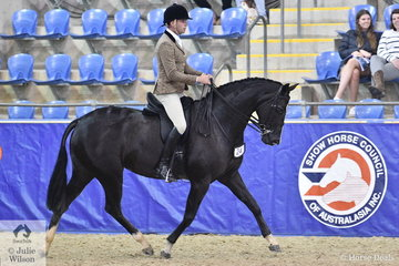 Greg Mickan rode Stephanie Barrington's lovely, 'Rebelle' to make Top Ten in the Walfam Investments Small Show Hunter Hack Championship.