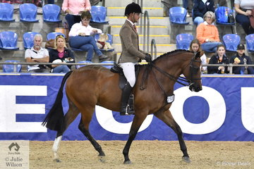 Rhys Stones rode Asha Hendler and the J and R Equestrian nomination, 'EBL Rich List' to take fifth place in the Walfam Investments Small Show Hunter Hack Championship.