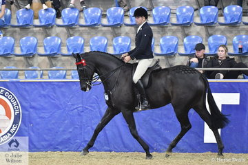 Greg Mickan rode Christine Frost's, 'Ink' to claim the Romsey Park Grand National Large Hack Championship.