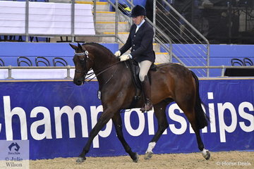 Well known and successful dressage and hack rider, Mark Kiddle took fourth place in the Romsey Park Grand National Large Hack Championship with Vince and Louisa Pavia's, 'Attorney'.