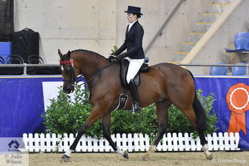 Sarah McMaster from Locksley in Victoria rode her well performed, 'Excellingly' to fifth place in the Romsey Park Grand National Large Hack Championship.