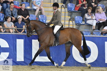 Rhys Stones rode the Longbottom and J & R Equestrian nomination, 'Power Play' to claim the Owner/Rider award and the Sydney Solvents Grand National Large Show Hunter Reserve Championship.