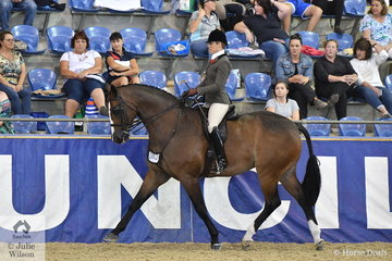 Alanna Richards from Findon in South Australia rode her well performed, 'France' to make Top Ten in the Sydney Solvents Grand National Large Show Hunter Championship.