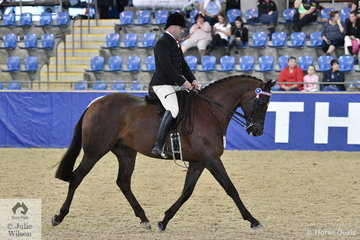 Leith Doran claimed back to back Small Hack Championships when he rode his and  A Havea's 'LA Confidential' to claim the 2019 SJM Equine Grand National Small Hack Championship.