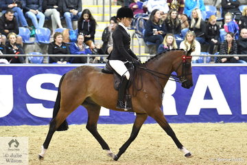 Billie Johnstone rode the Johnstone Family's, 'Rosedale Remembrance' to take out the Kyros Family's Grand National Large Galloway Championship and on the final night of 2019 competition they claimed the Hufglocken Grand Champion Ridden Saddle Horse award.