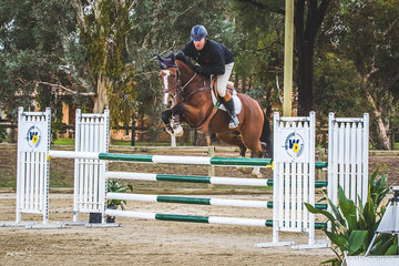 Michael Lucas and Dusky Farm Conqueror placing second in the 115cm