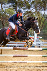 Caleb Bertram riding his own Cee Jay Park Oreo in the 75cm Pony class
