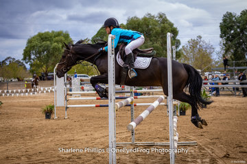 Zoe Waller and Kingsbrook Victory showed their opposition a clean pair of heals to take 1st place in the 104cm pony class